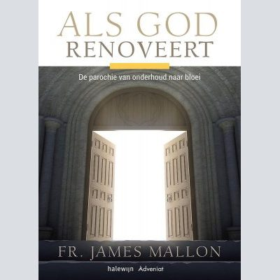 'Als God renoveert' van James Mallon